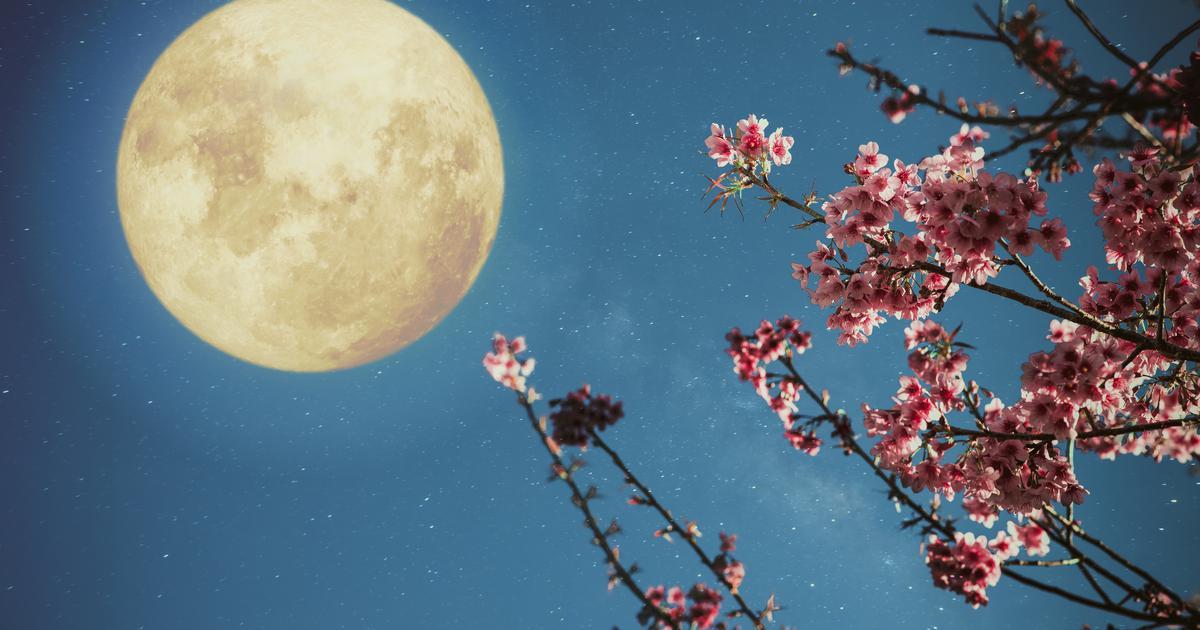 Pun Mjesec u Vagama Ružičasti pun Mjesec: Provjeri kako će utjecati na tvoj horoskopski znak Dobro nam došao prvi puni Mjesec nove astrološke godine. Ružičasti pun Mjesec u znaku Vage 8. travnja će nas obasjati i donijet će malo ...