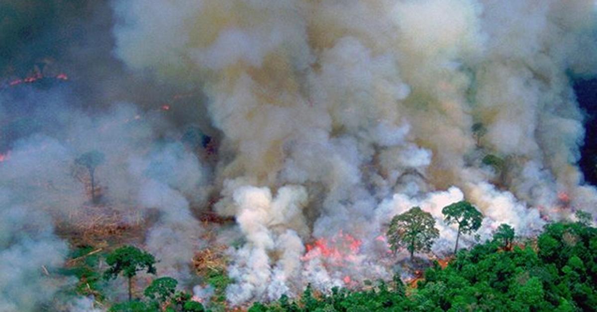 7 pitanja i odgovora Amazona gori: Zašto je to i naš problem? Gori Amazonija, iako su požari u tom području prirodna pojava, ove su se godine u odnosu na isto razdoblje prošle godine povećali za 83 ...