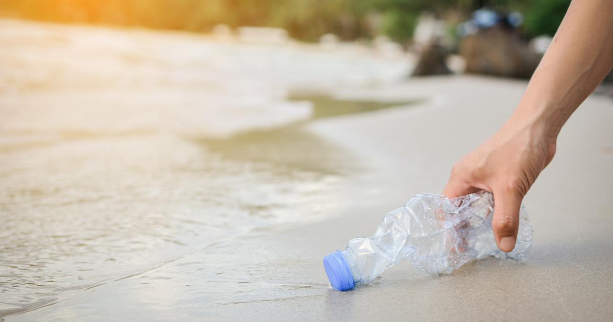 izum koji bi mogao promijeniti svijet nova metoda razgradnje pet plastike osmišljena na ruđeru boškoviću