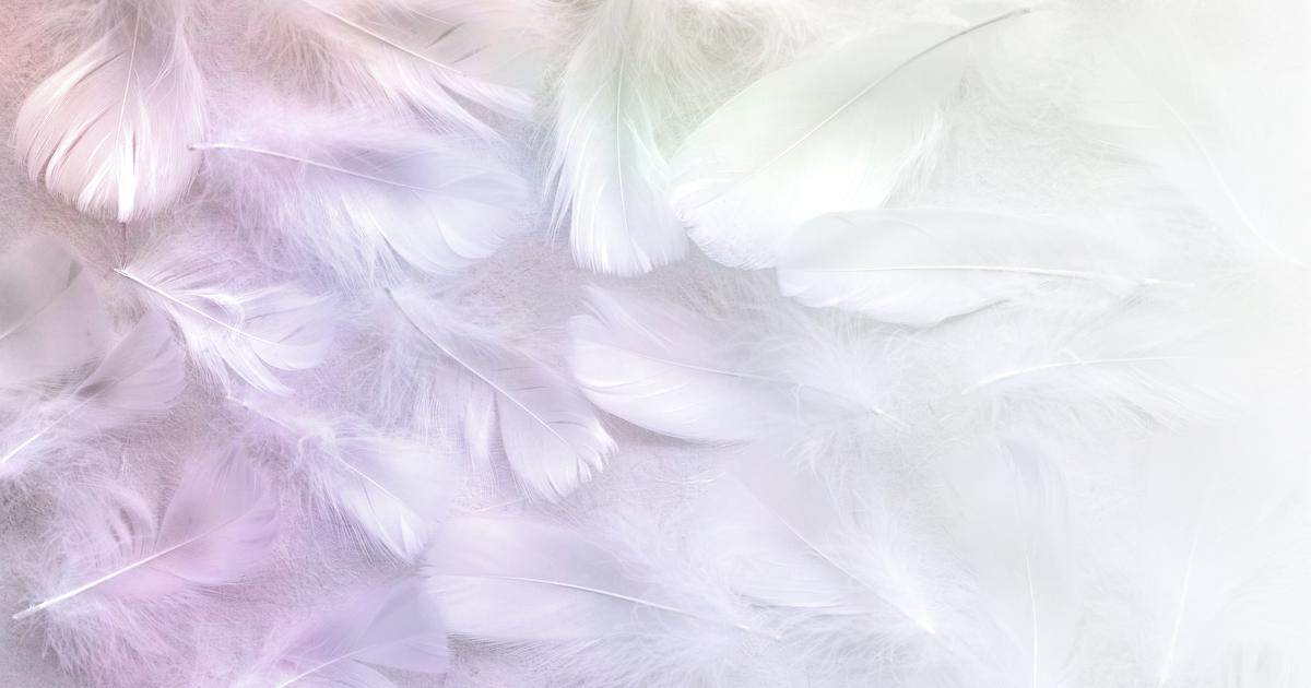 Šapat anđela Tvoja anđeoska poruka za nedjelju